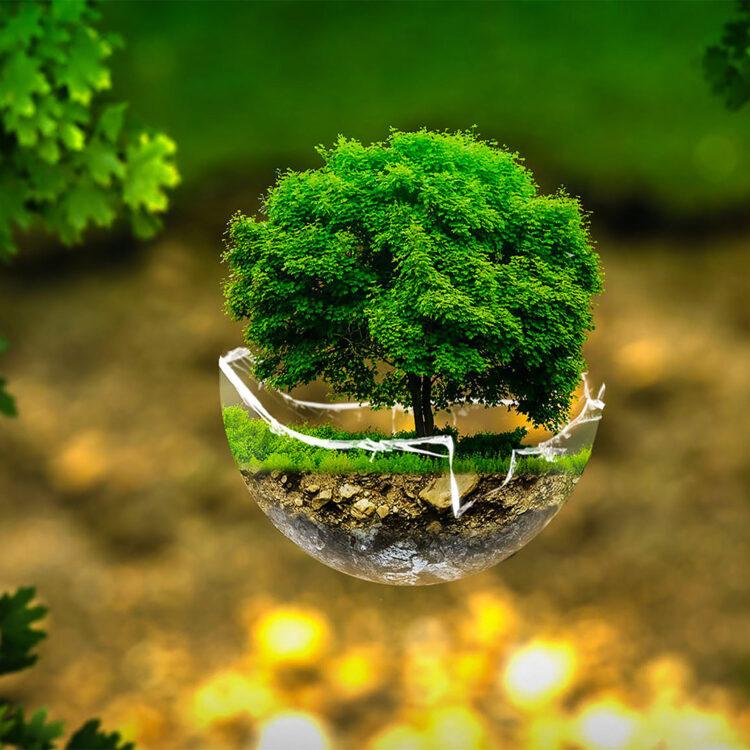 """Екологічний онлайн-конкурс декоративно-прикладного мистецтва """"Друге життя"""""""